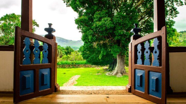 Individuelle Gartenplanung: Setzen Sie auf ein stimmiges Gesamtkonzept
