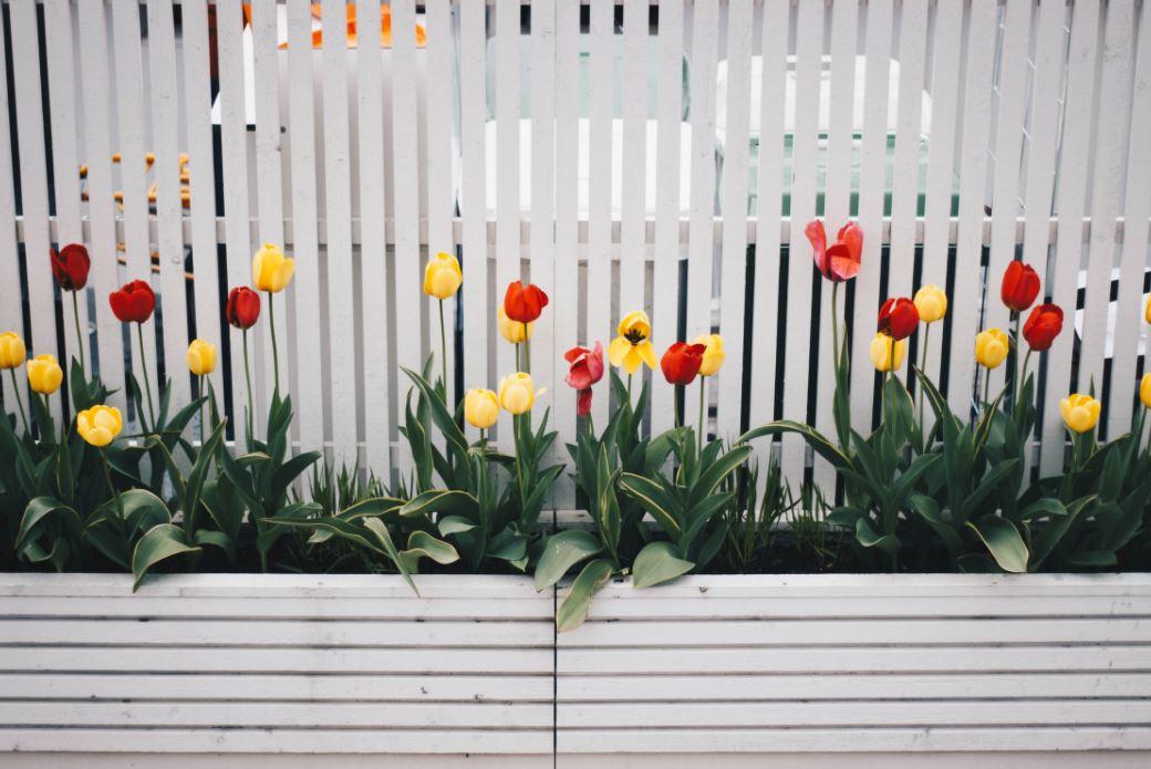 Gartentor nach Maß